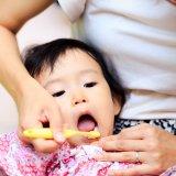 赤ちゃん 歯磨き 日本人