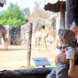 赤ちゃん 動物園 日本人