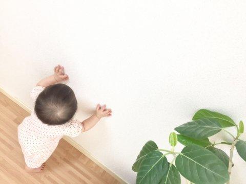 つかまり立ち 赤ちゃん 日本人