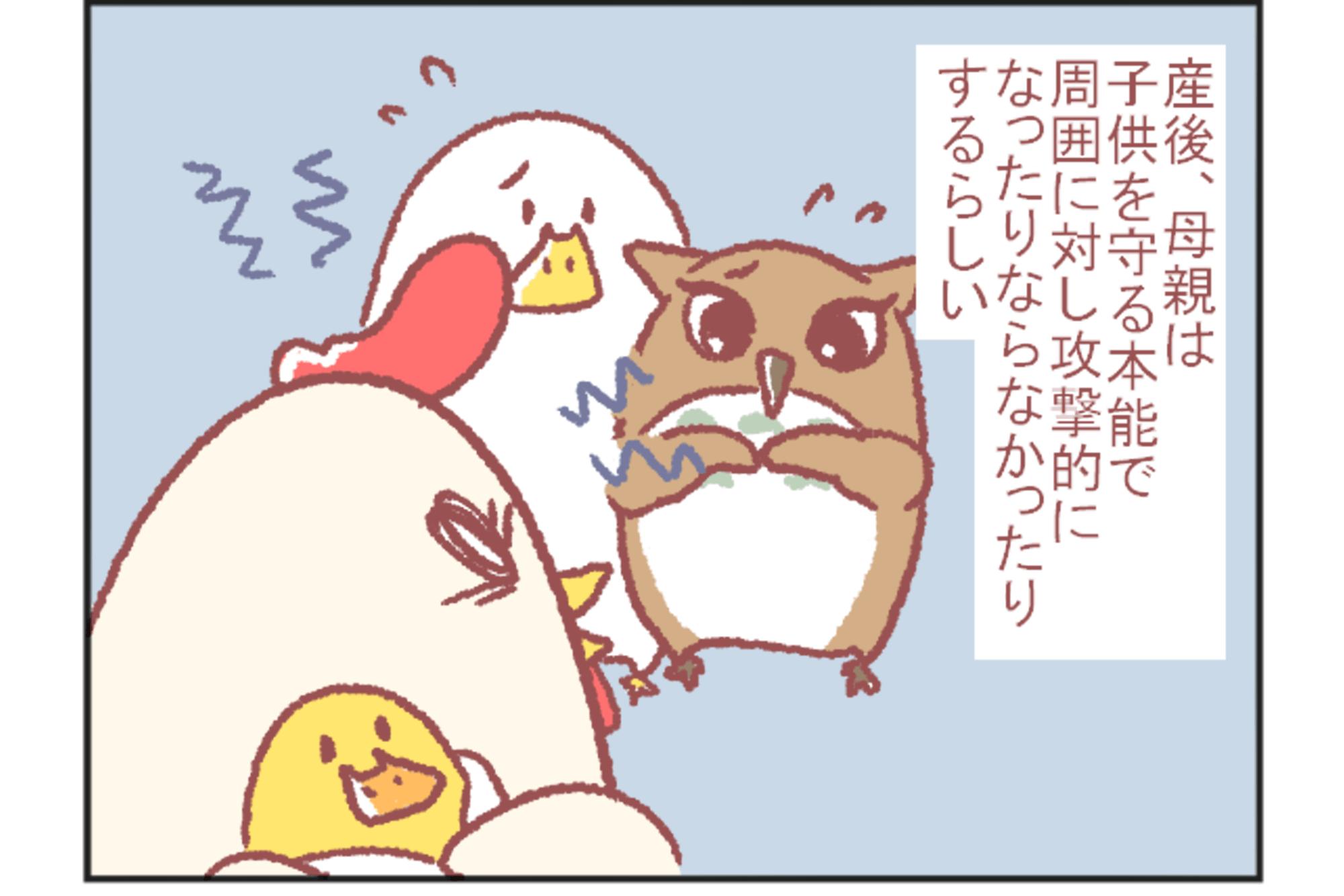 鳥谷丁子のオモテ育児・ウラ育児#7「産後ガルガル期」