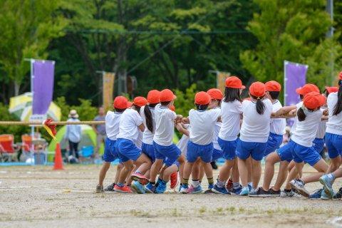 運動会 小学生 綱引き 日本人