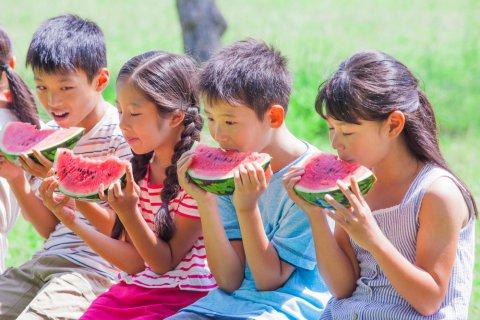 夏休み 小学生 日本人 子供 スイカ