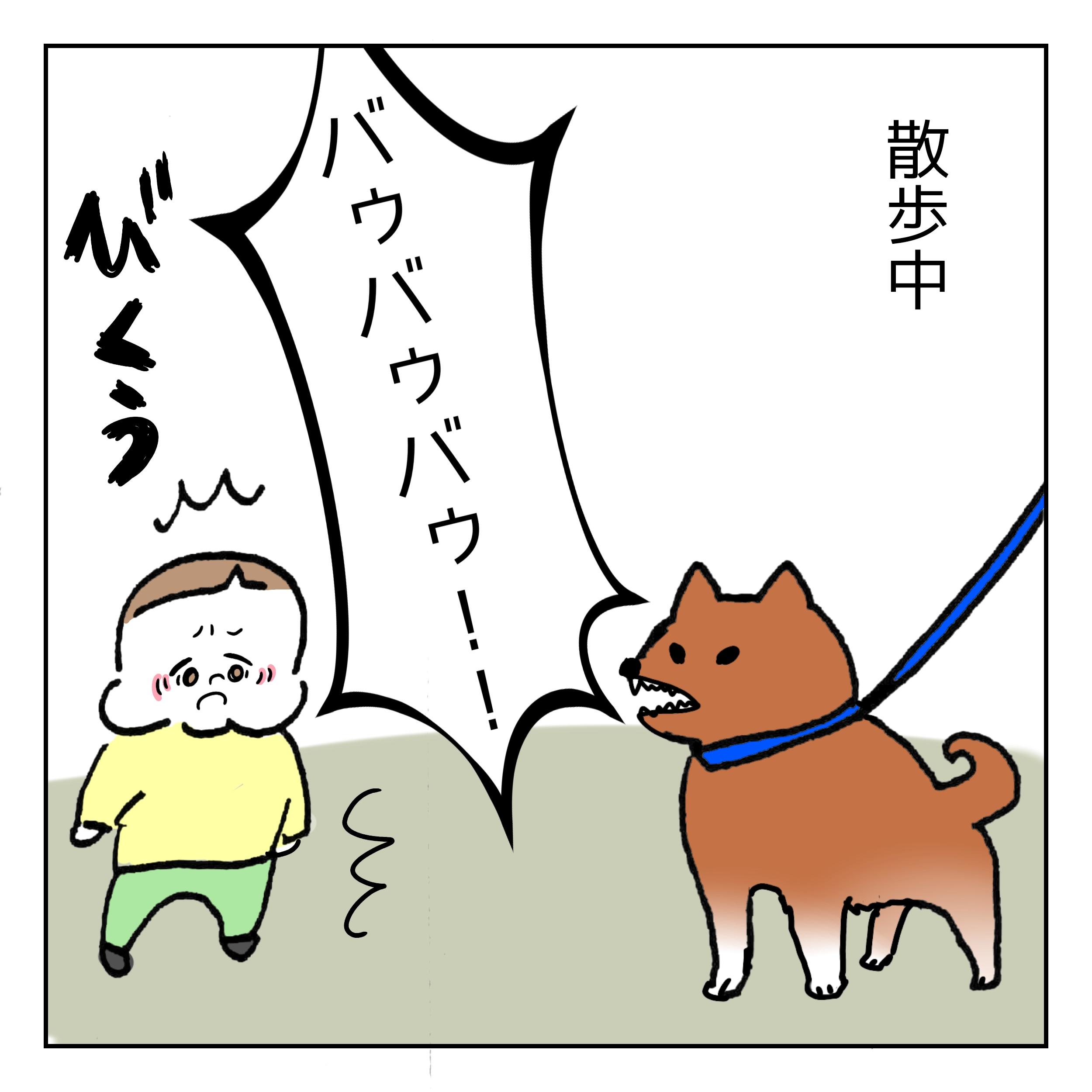 犬が怖いと思いきや…?|ズンズンのあざとかわいい日記#19