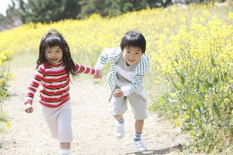 日本人 子供 きょうだい 男女
