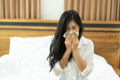 日本人 女性 鼻水 風邪