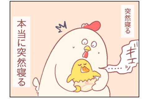 新生児はほんとうに不思議。|鳥谷丁子のオモテ育児・ウラ育児#14