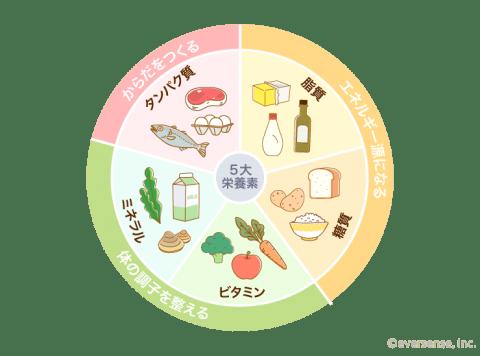 要出典 カロリーメイトゼリー 5大栄養素