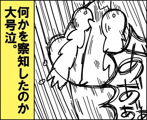 ゆゆ家 連載21話5