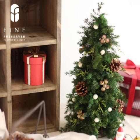 要出典 クリスマスツリー フォレスト・ツリー
