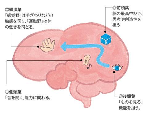 miku転載 イラスト 子どもを伸ばす「脳育て」