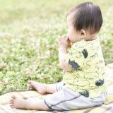 外 ピクニック お弁当(アイキャッチ)
