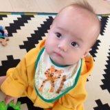 baby体験 9_10m_kenshin lucashaaan