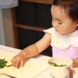 baby体験 1y6m_rinyusyoku greensuu
